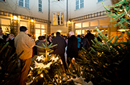ALvis - Celebrate in our Winter Wonderland in Berlin Mitte