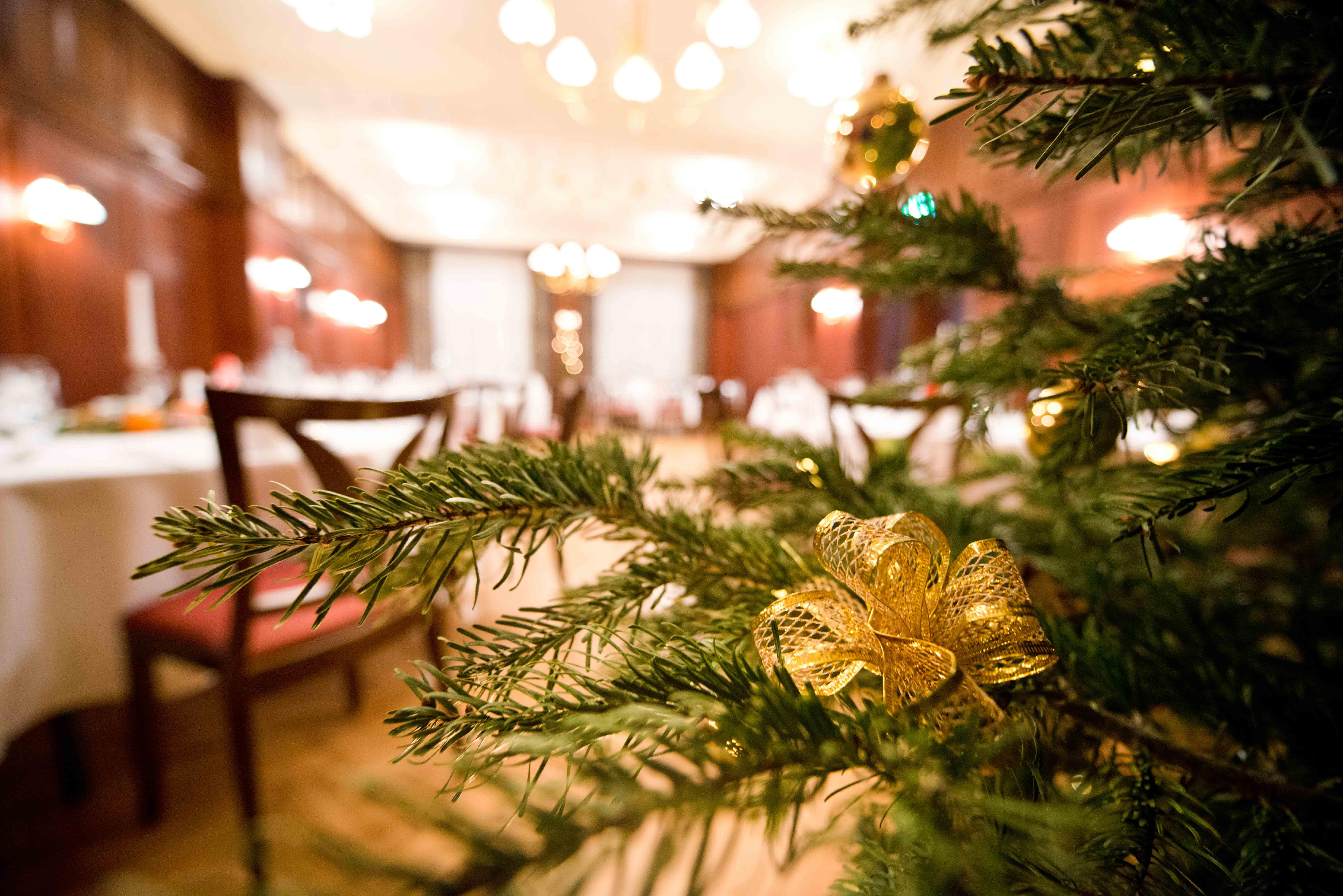 Hotel Albrechtshof Berlin Christmas Party
